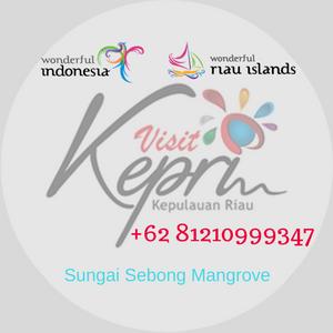 081210999347, paket wisata bintan lagoi kepri, sungai sebong mangrove