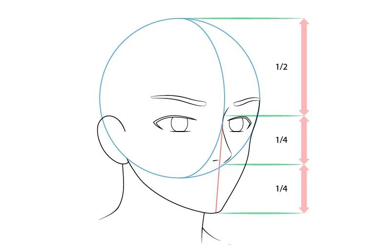 Anime laki-laki wajah 3/4 tampilan gambar hidung