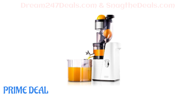 60% OFF Premium Slow Masticating Juicer