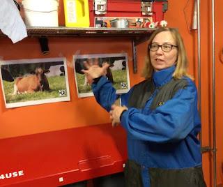 Johanna Salmia näyttää Zappar-sovelluksella tehtyä lehmän kuvaa. mistä avautuu tietoja ilmastonmuutoksesta.än