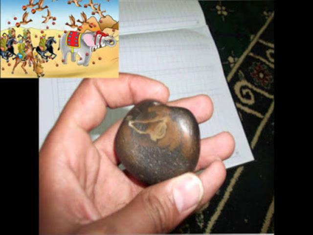 حقيقة العثور على حجر من سجيل يعود لحادثة الفيل سبحانك يا الله.