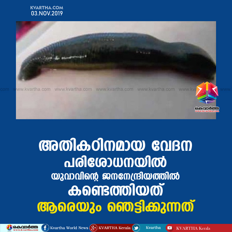News, Kerala, Ambalapuzha, hospital, Doctor, Blood, Young, Operation, Casualty