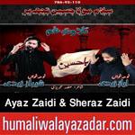 http://www.nohaypk.com/2015/10/ayaz-zaidi-sheraz-zaidi-nohay-2016.html
