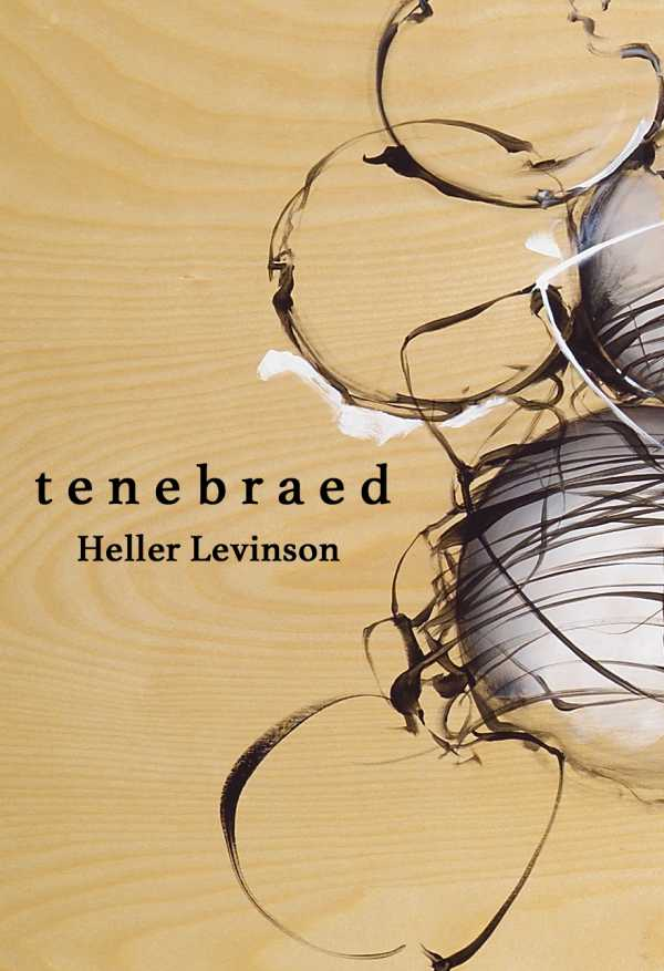 Nathan Spoonu0027s To Frivolity, A Review Of Heller Levinsonu0027s Tenebraed