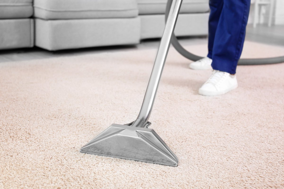 Why carpet Steam Cleaning had been so popular till now?