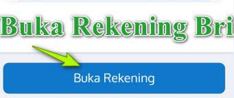 Website Bank Bri