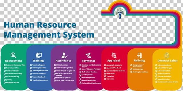 Human Resource Management System for Car Dealers
