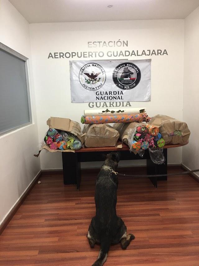 GUARDIA NACIONAL ASEGURÓ ALREDEDOR DE 94 KILOS DE APARENTE MARIHUANA OCULTA EN TUBOS DE PVC