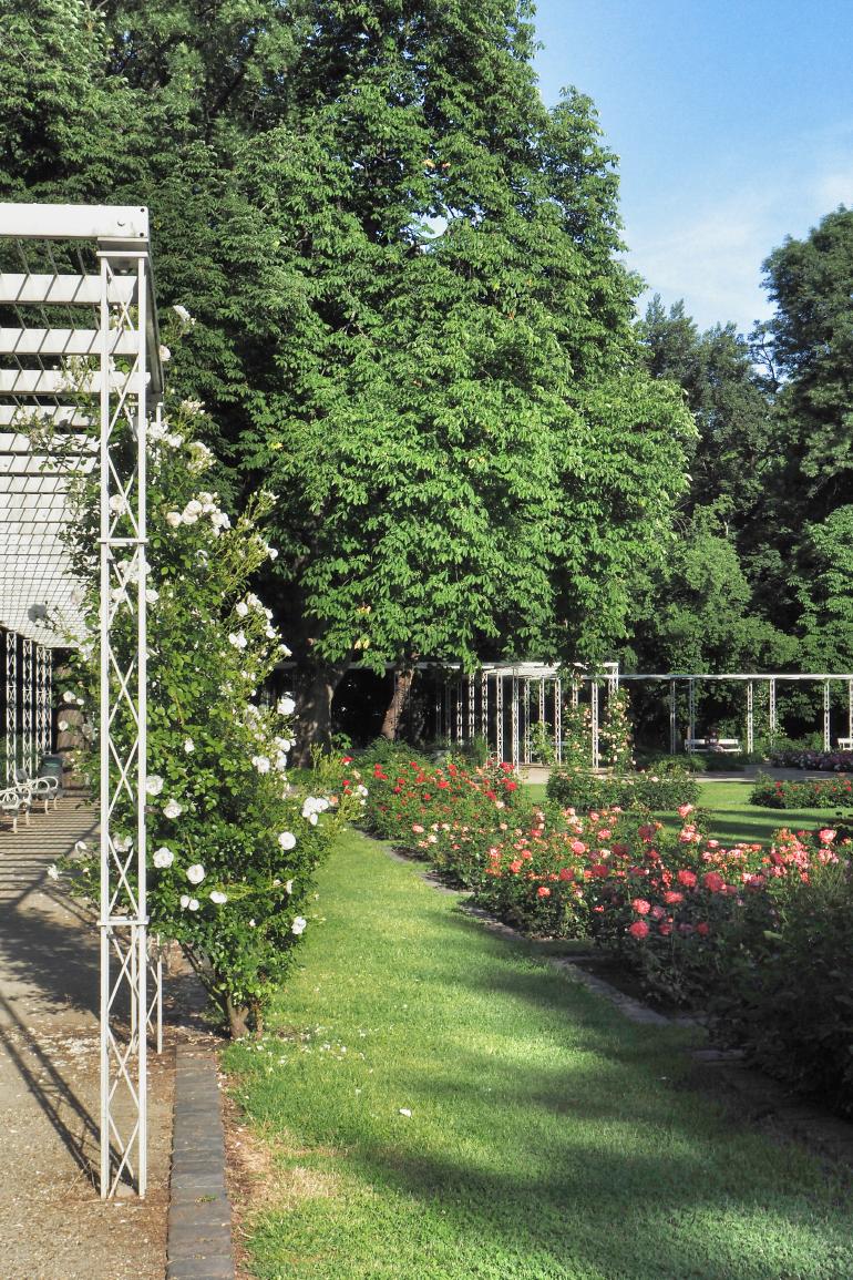 Jardins fleuris de l'île Marguerite à Budapest