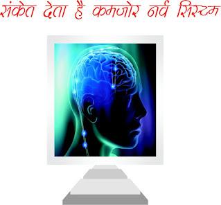 तंत्रिका तंत्र  Nervous Systems