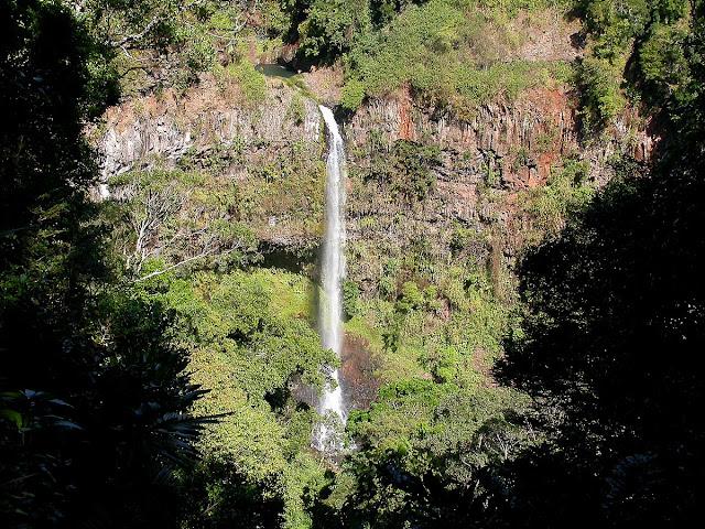 cascade au coeur de la forêt de la montagne d'Ambre