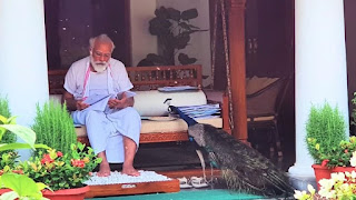 modi-with-peacock