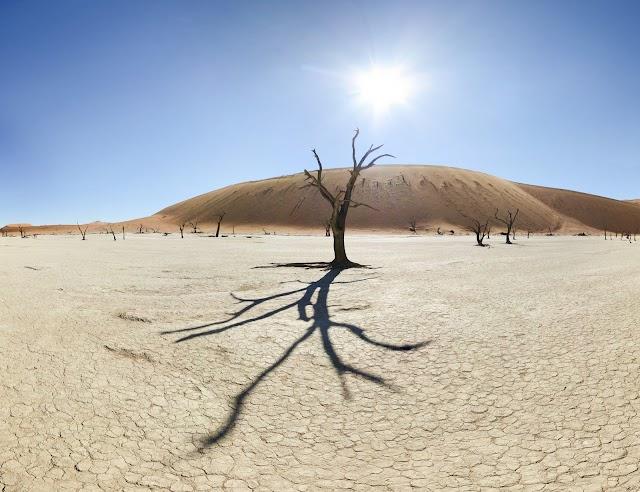 «Σε ερημοποίηση θα οδηγηθεί το 40% της Ελλάδας, αν...»