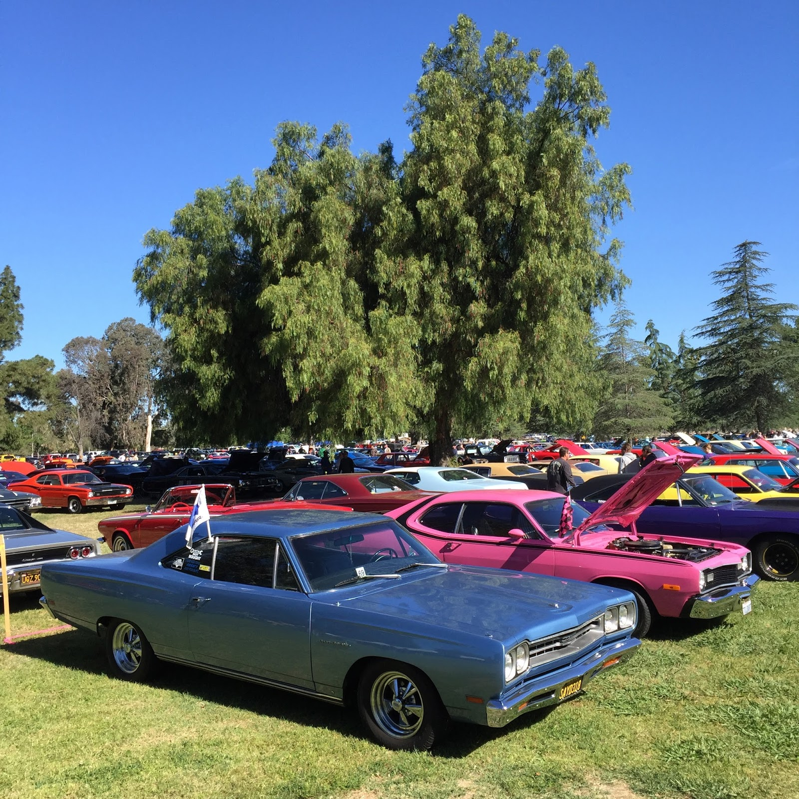 Covering Classic Cars : 30th Annual CPW Spring Fling XXX