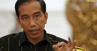 presiden joko widodo ( jokowi )
