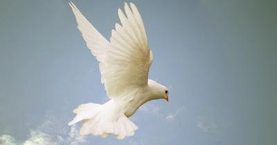 holy spirit image photo pix