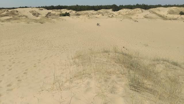 край олешковской пустыни