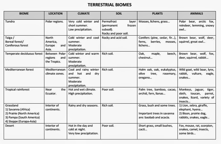 Biomes Chart Bbilingual I E S Gonzalo Tore Ballester Useful Links To