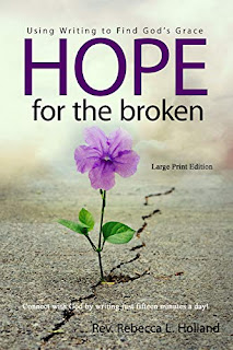 cover of Hope for the Broken. a flower growing in a pavement crack