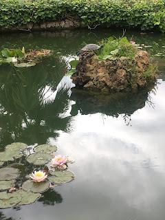 ピサ植物園