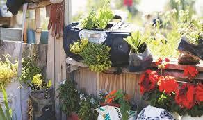 زراعة الحدائق والشرفات والمنازل أمن غذائي وصحة نفسية
