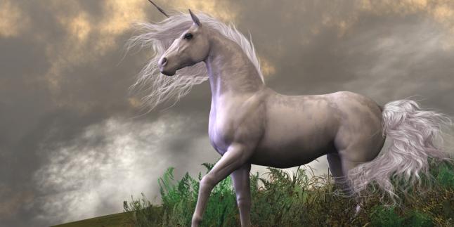 9100 Foto Penampakan Unicorn Gratis
