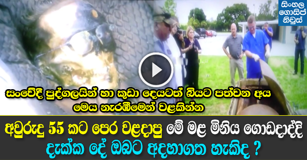 Amazing Gossip Lanka News Video