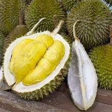 6 Manfaat Buah Durian Untuk Kecantikan dan Kesehatan Tubuh Manusia