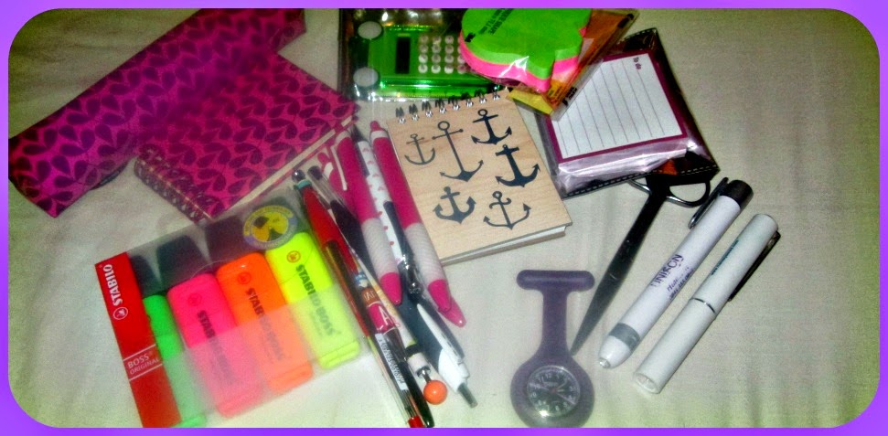student nurse essentials