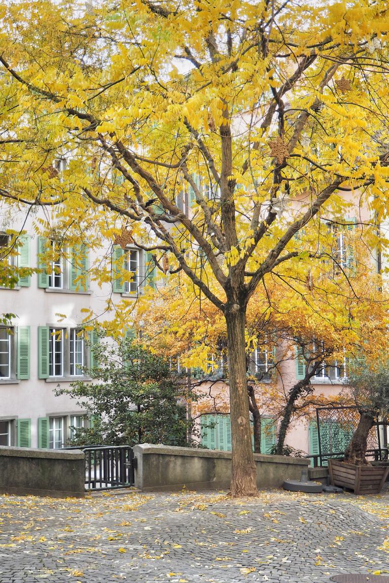 Ville de Lausanne en Suisse en automne