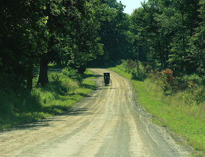 gravel road with Amish horse and buggy in distance