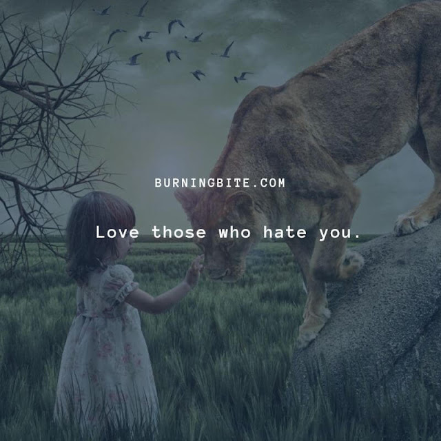 Love those who hate you. ~Leo Tolstoy