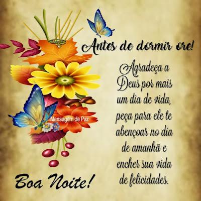 Antes de dormir ore!  Agradeça a Deus por mais um dia de vida,   peça para ele te abençoar no dia de amanhã   e encher sua vida de felicidades.  Boa Noite!