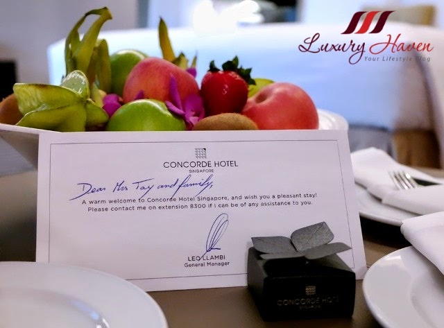 luxury haven reviews singapore concorde hotel