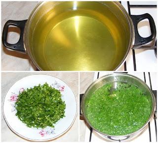 ceai de slabit, ceai de patrunjel, ceai de patrunjel preparare, ceai de patrunjel pentru slabit, dieta cu ceai de patrunjel, cura cu patrunjel, dieta cu patrunjel, diete, cure, regim, retete, leacuri babesti, retete naturiste, ceaiuri, ceai, ceai de patrunjel verde,