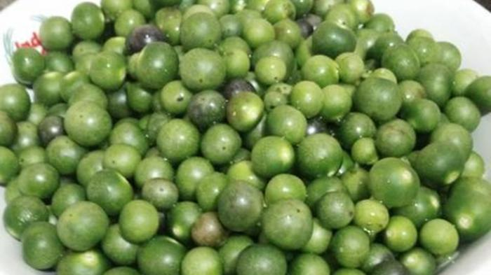 INCREDIBLE, SMALL FRUIT, VERY USEFUL !! CAN CURE FOLL CANCER CANCER HOW TO TREAT IT