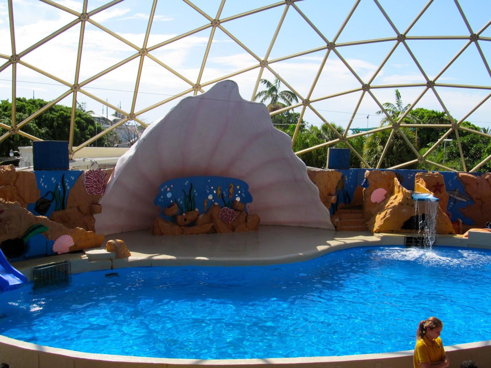 Sea Lion Show at Miami Seaquarium, FL - ouroutdoortravels.blogspot.com