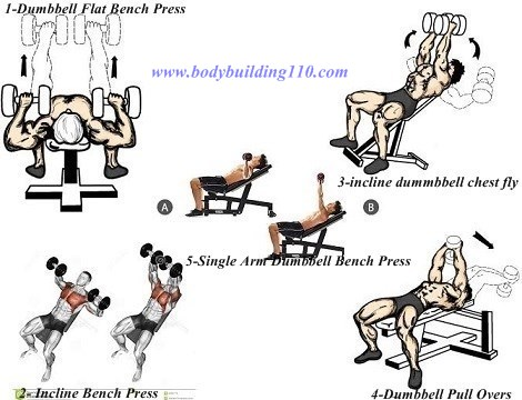 Top 5 Best Dumbbells Only Exercises For The Chest