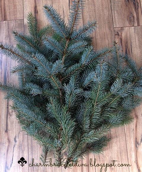 fresh cut evergreen branches