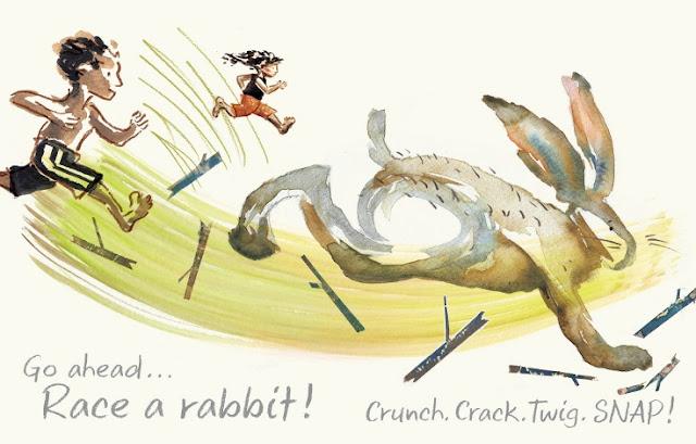 Run_Wild_Picture_Book_David_Covell