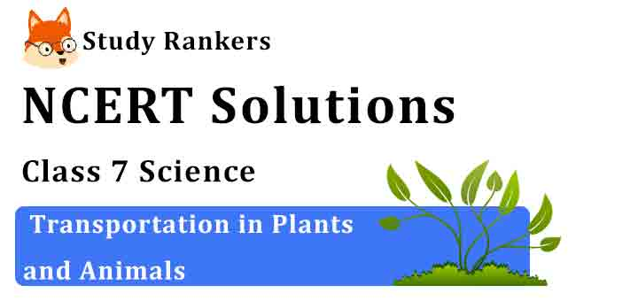 NCERT Solutions for Class 7 Science Chapter 11 Transportation in Plants and Animals