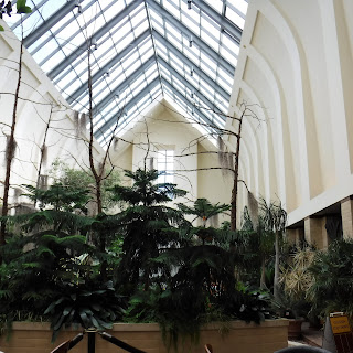 tropical plants and ferns in the floral display hall at Lauritzen Gardens