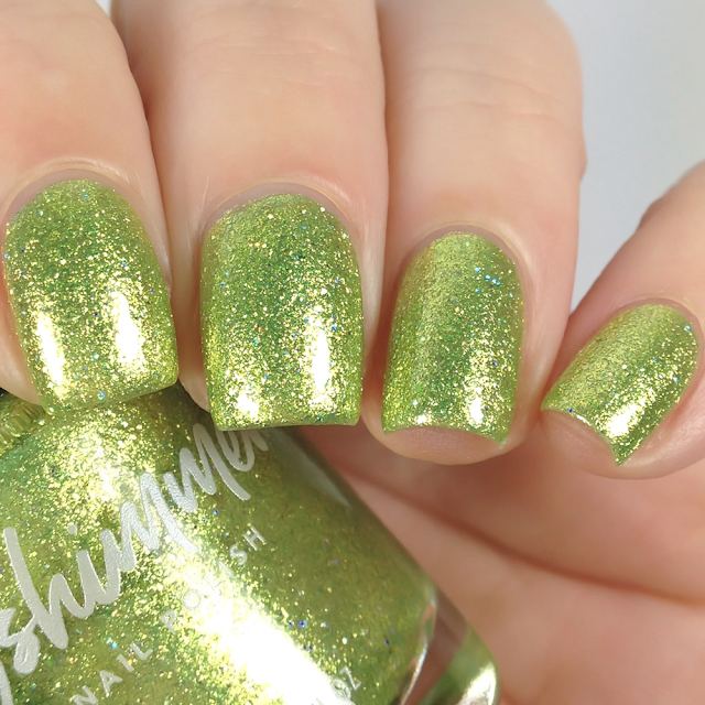 KBShimmer-Turtley Awesome