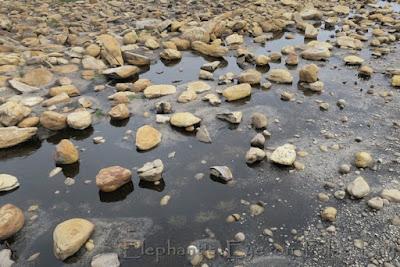 WATER in Sirkelsvlei!