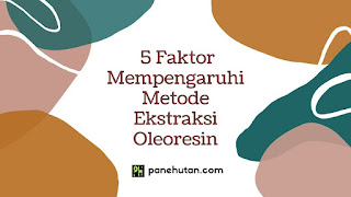 5 Faktor Mempengaruhi Metode Ekstraksi Oleoresin