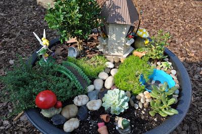 Design To Shine My Fairy Garden