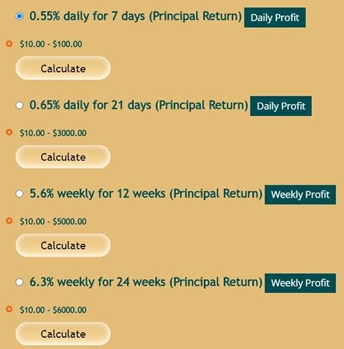 Инвестиционные планы WebGlobalTrend