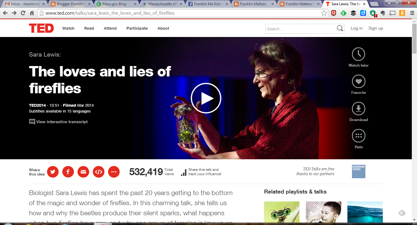 screen capture of Sara Lewis's TED Talk