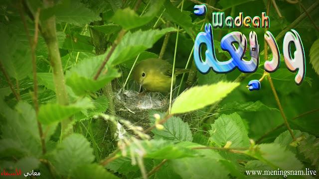 معنى اسم وديعة, وصفات حاملة هذا الاسم Wadeah,
