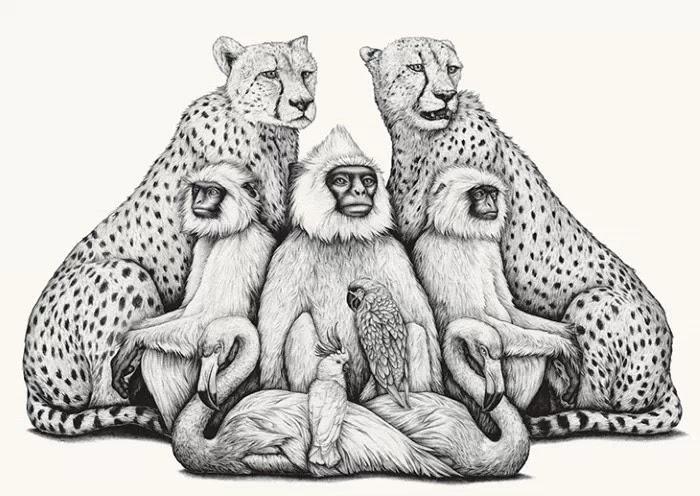Истории о животных. Amy Dover
